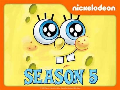 Spongebob Season Episodes Squarepants Wikia Dvd Wiki
