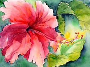 Large Hibiscus   Exploring Watercolor