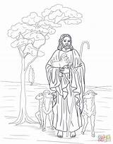 Shepherd Coloring Jesus Bible Pages Catholic Printable Sheep Supercoloring Colouring Crafts Colour Sheets Template Lost Story Activities Drawing Version Craft sketch template