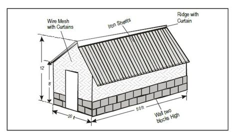 poultry farming  kenya layers house  dimensions