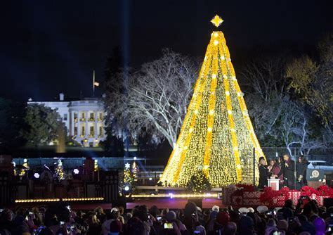 obama lights up national christmas tree appeals to