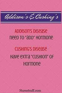936 Best Nursing Study Aids  Mnemonics Images On Pinterest