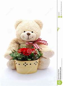 Teddy bear with red roses stock illustration. Image of ...