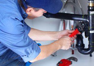 Plumber In St Charles & St Louis County  Precision. Commercial Invoice Software Dr Wong Boulder. Solvency Ratio Calculator Lpn Online Colleges. Gary Williams Attorney Centre College Tuition. Blinds For Bay Windows Ideas. Payless Auto Sales Stockton Ca. Bethany Divinity College And Seminary. Real Time Pcr Applied Biosystems. Dental Implants Denver Co Magento Daily Deals