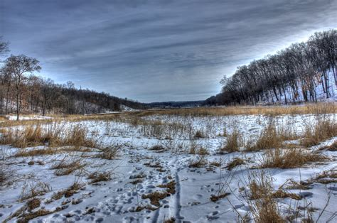 Winter Tundra On The Ice Age Trail, Wisconsin Image