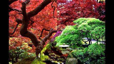 jardines orientales hd  arte  jardineria diseno de