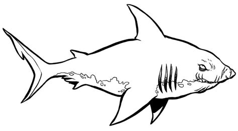 Shark Coloring Pages Print