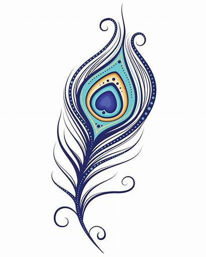 Peacock Feather Clipart Down Clipartmag