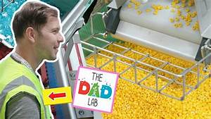 Lego Factory Tour In Billund Denmark With Thedadlab   Inside The Story Of How Lego Is Made
