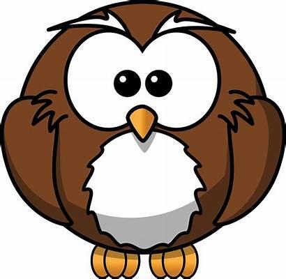 Owl Cartoon Clipart Clip Owls Animated Drawings