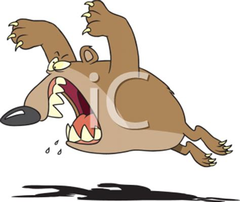 royalty  clipart image  furious bear aggressively