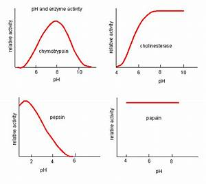 C7  Inhibition By Temperature And Ph Changes