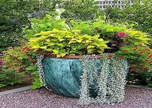 98 best images about Flower Pot Gardens on Pinterest