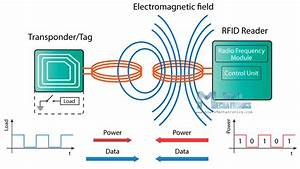 Rfid Attendance System With Real