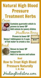 Herbs for Natural High Blood Pressure Treatment Infographic - Healing Bookstore  Hypertension Hawthorn