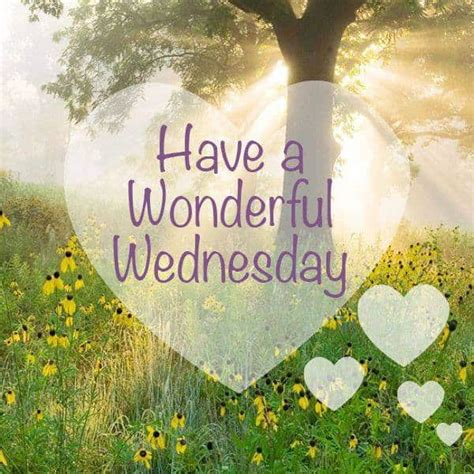 Images Of Happy Wednesday Happy Wednesday Hd Wallpaper Images Photos Pictures 2018