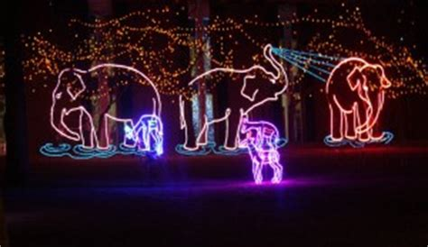 denver zoo lights 2011 tickets discounts