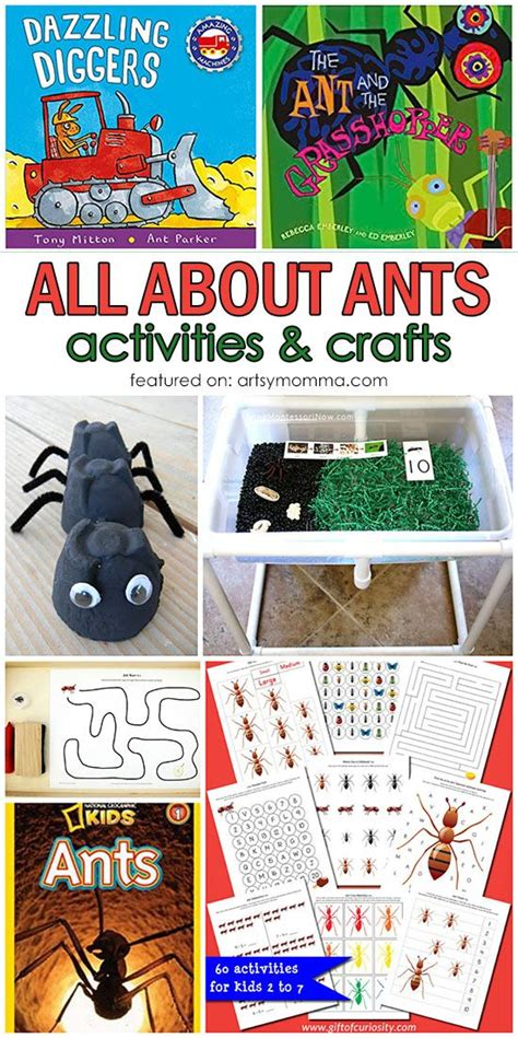 929 best bugs amp insect activities for images on 811 | fad5231f3d19f49f3194a50bcbd37056