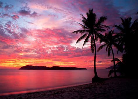 malaysia sunset beach palms island