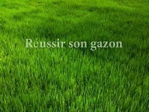 Acheter Gazon A Semer : gazon de regarnissage rapide en graines acheter gazon en ~ Premium-room.com Idées de Décoration