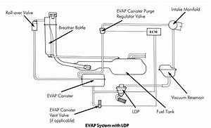 Here U0026 39 S How A Volkswagen  Audi Evap System Works
