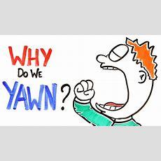 Why Do We Yawn? Youtube