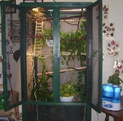 images  cabinet bird cages  pinterest