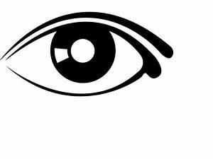 Eye Vector Icon - ClipArt Best
