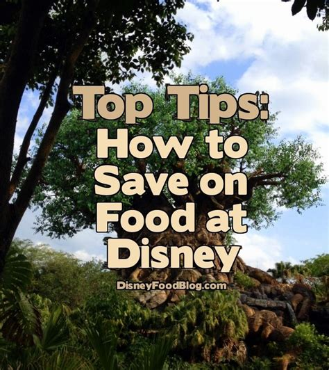 Tip From The Dfb Guide Three Great Ways To Save On Food At Disney World  The Disney Food Blog