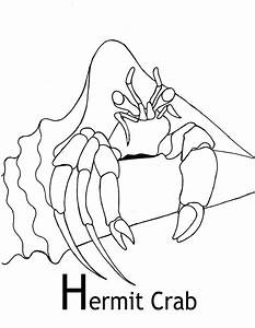 91+ [ Hermit Crab Coloring Pages And Facts Hermit Crab ...