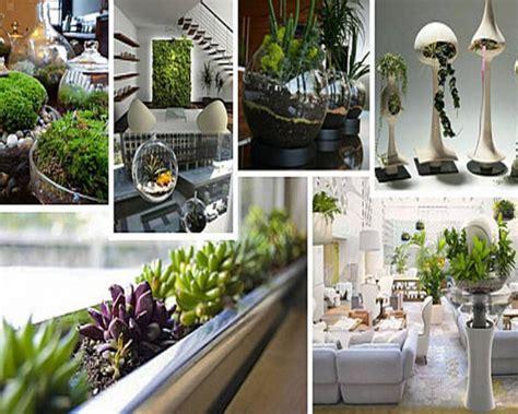 spunti e idee per arredare la casa con le piante da interno
