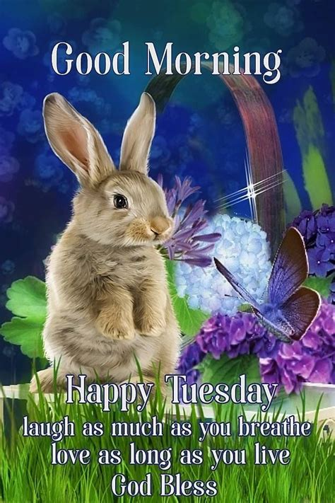 Laugh Breathe Love Good Morning Happy Tuesday Pictures