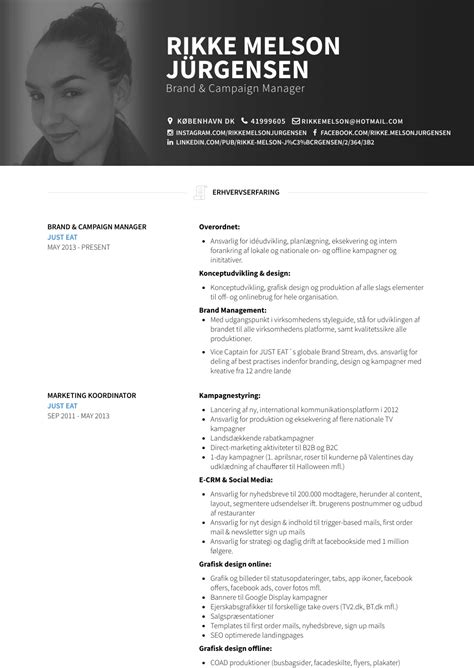 Brand Marketing Manager Resume Format by Brand Manager Resume Sles Templates Visualcv
