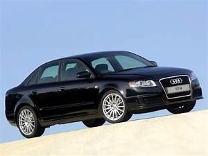 Audi A4 2006 : audi a4 dtm edition specs photos 2005 2006 2007 autoevolution ~ Medecine-chirurgie-esthetiques.com Avis de Voitures