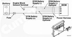Need Wiring Diagram For Cm875 P  N 3103533 This Is On Ism