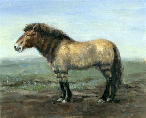 horse extinct prehistoric animals pleistocene north american america horses fauna philip wildlife age years native ago history newsom dinosaurs interesting