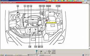 2002 Ford Focus Fuel System Diagram  2002  Free Engine