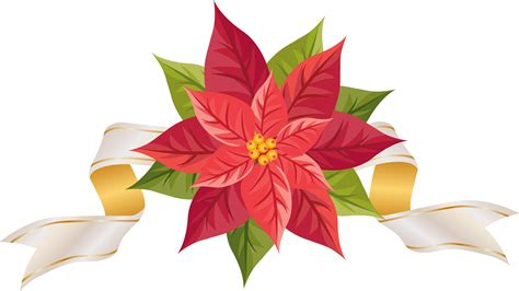 png christmas poinsettia clipart   cliparts