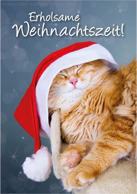 doppelkarte weihnachtskarte schlafende katze erholsame