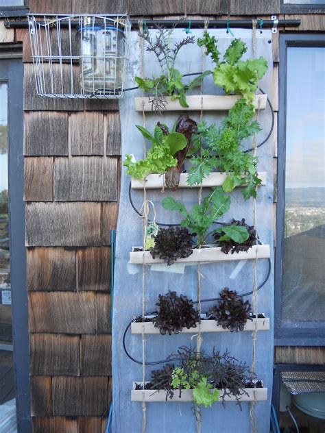 Watering Vertical Gardens by Diy Gravity Fed Drip Irrigation System For A Vertical