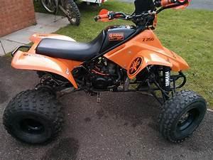 Quad Yamaha 250 : yamaha yz 250 engined quad tri z z250 ~ Medecine-chirurgie-esthetiques.com Avis de Voitures