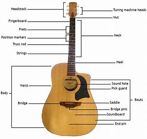 A To Z Guitar Guide  The Acoustic Guitar