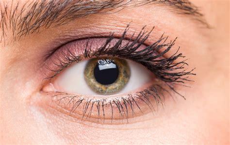 Maquillage yeux verts comment maquiller des yeux verts en vidéo
