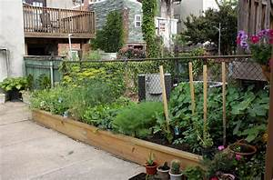 Urban Gardening Definition : dolce fooda urban gardening in baltimore part 2 what can you make with kale ~ Eleganceandgraceweddings.com Haus und Dekorationen