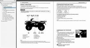 95 Suzuki King Quad Wiring  Suzuki  Wiring Diagram Images
