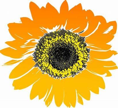 Sunflower Clip Svg Onlinelabels