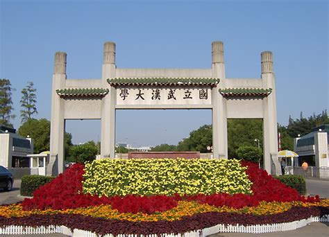 top  chinese universities  software engineering study