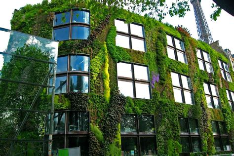 vertical garden home advice for creating a healthy and beautiful green wall from its originator home decor singapore