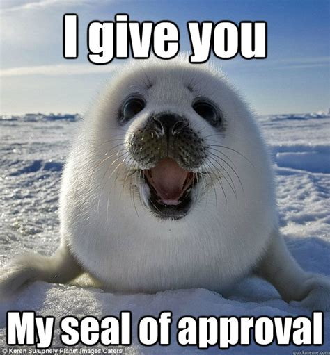 Seal Of Approval Meme - i give you my seal of approval easily pleased seal