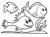Fish Coloring Educative Forget Supplies Don sketch template